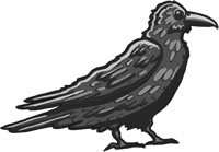 Raven: A bird wiser than some wizards